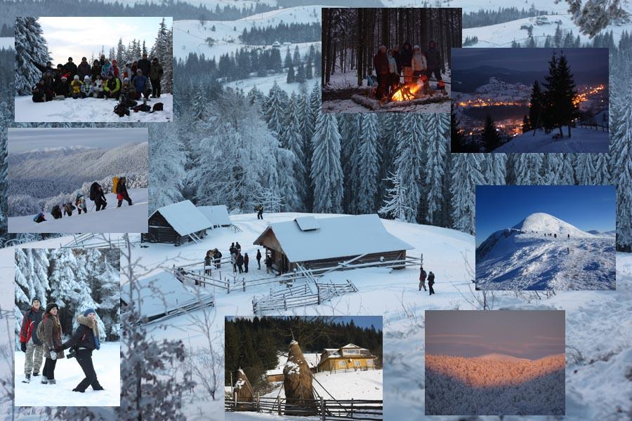 Фотографии отдых в Карпатах на Рождество