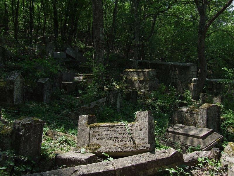 Караимское кладбище в мрачном лесу