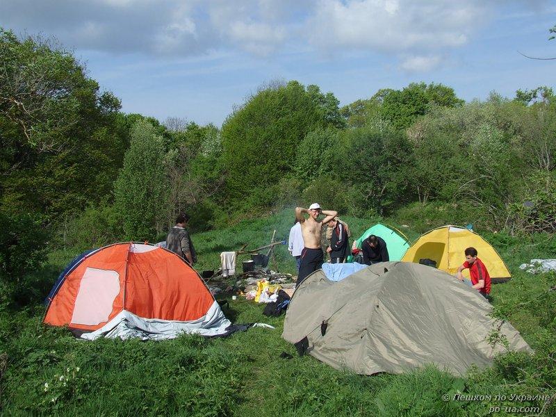 Лагерь на поляне в лесу