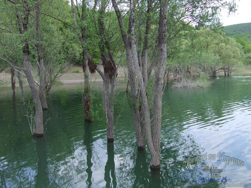 На берегу водохранилища весной