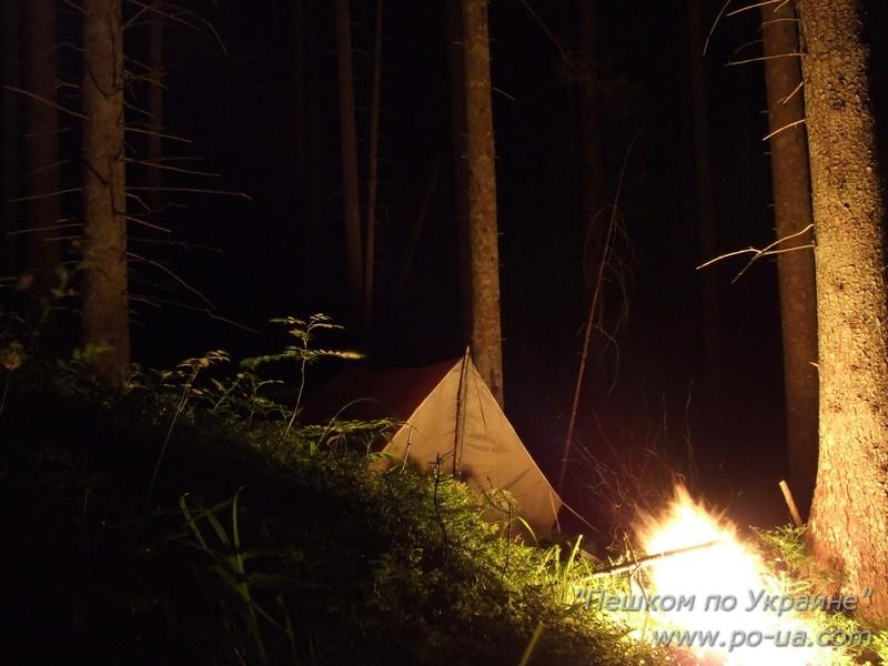Ночевка в дремучем смерековом лесу