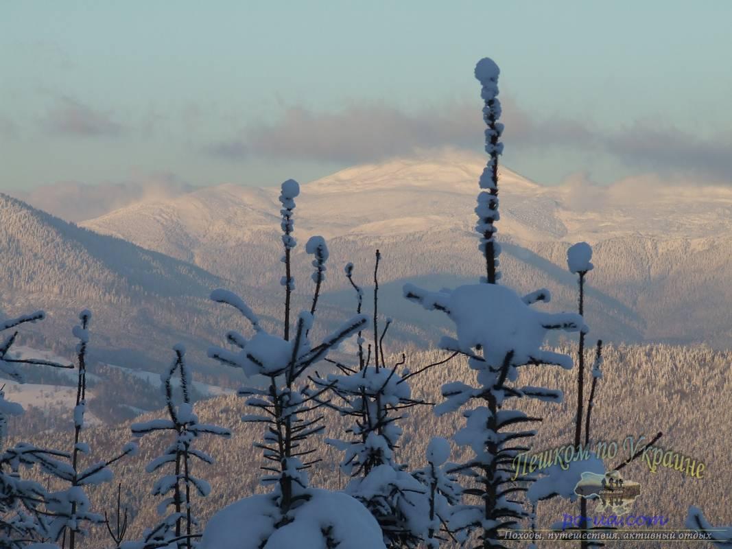 Вид на Говерлу зимой