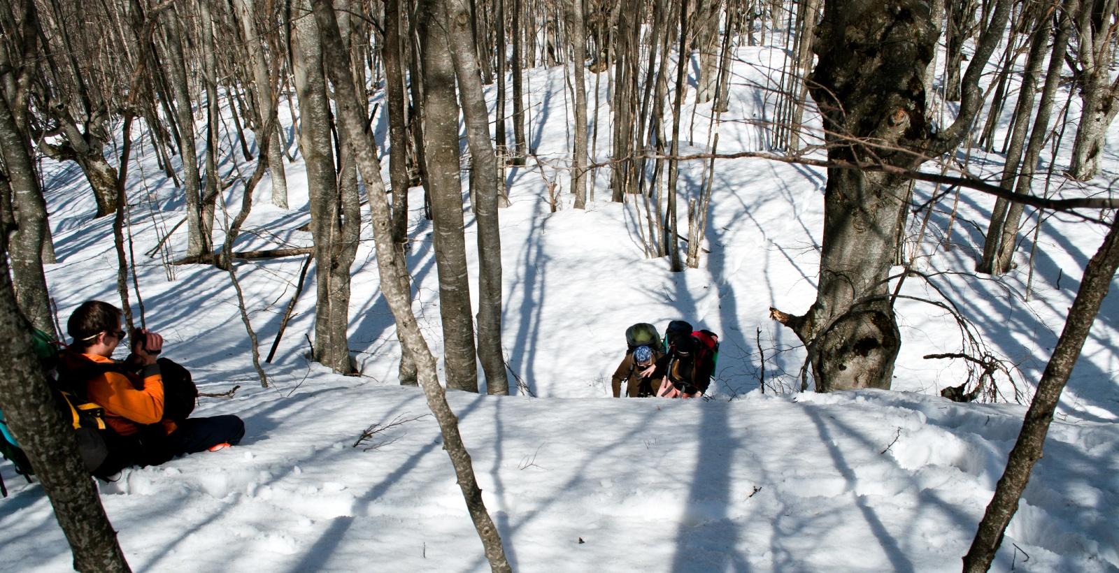 Описание: 24-26 марта 2012 (Большой каньон)\_DSC0093-Edit.jpg
