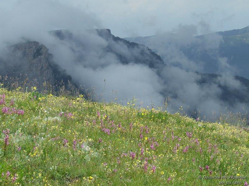Облака наплывают на цветущий луг