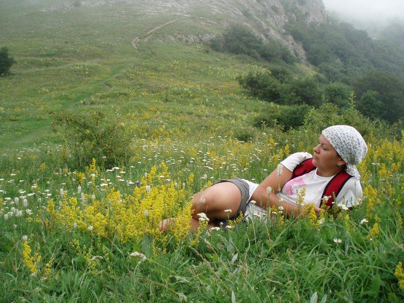 Среди крымского разнотравья