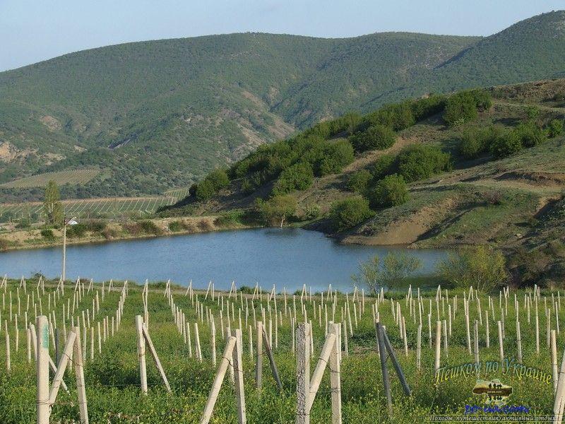 Озеро в долине виноградников
