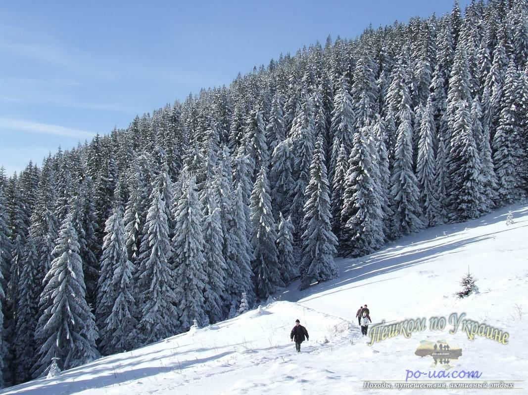 Зимой в Карпатах на Рождество