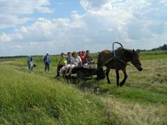 Зеленый туризм в Крыму. На запряженной лошади