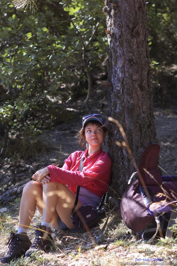 Привал в лесу, дикий отдых, Крым