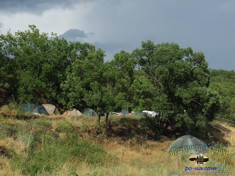 Палатки в дубовом лесу