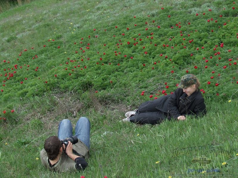 Фотосессия в пионах узколистных