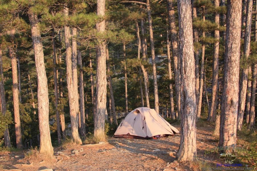 Ночевка в палатке в крымском лесу, летние лагеря в Украине
