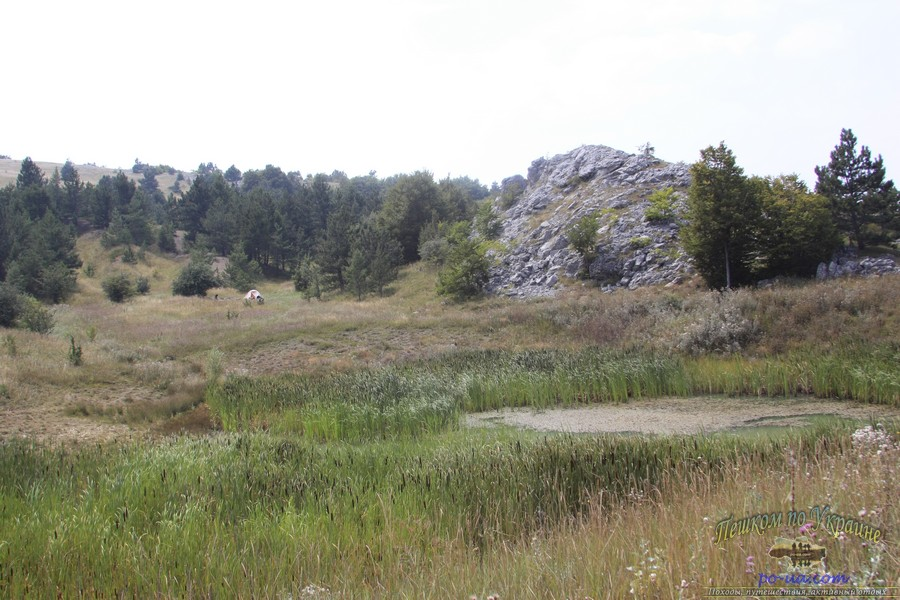 Туристическая стоянка в лесу, Крым
