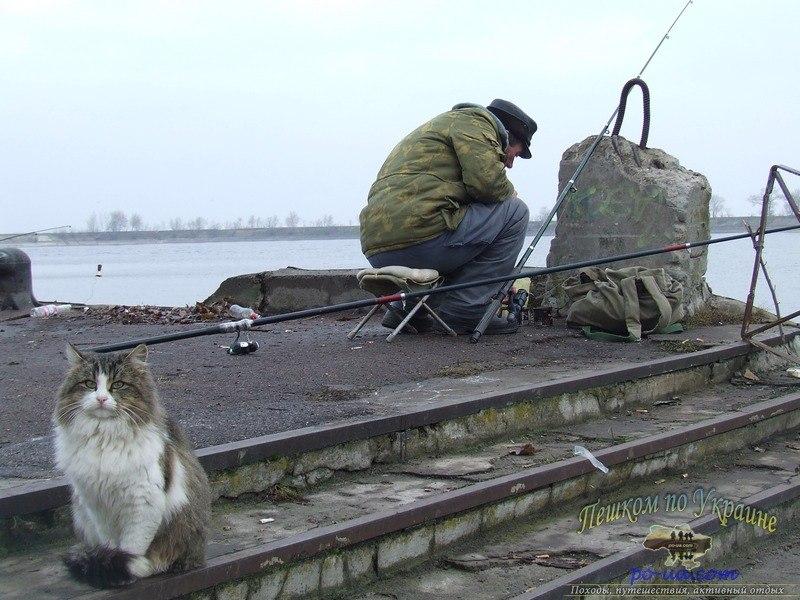 где и как ловить рыбу в керчи