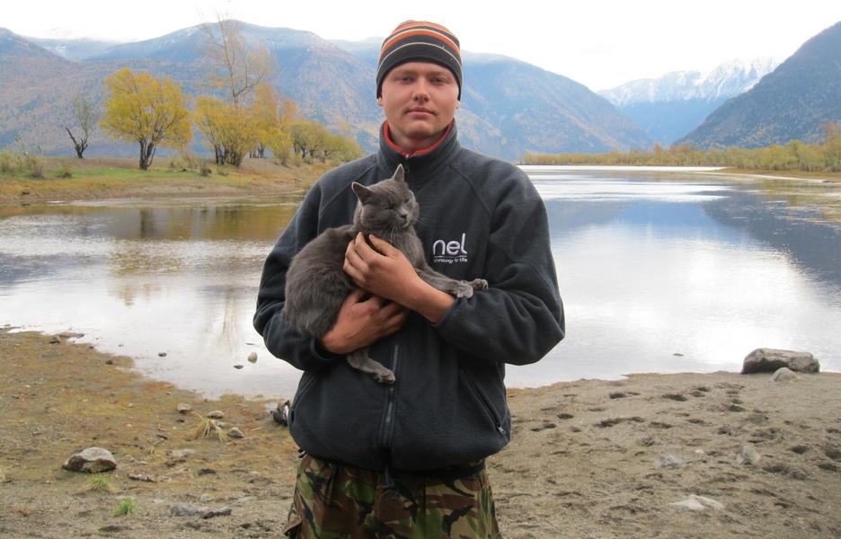 Алтайская кошка греет душу