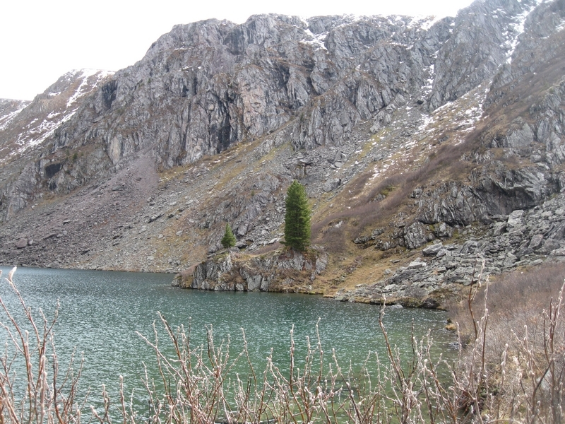 Берег озера на Алтае
