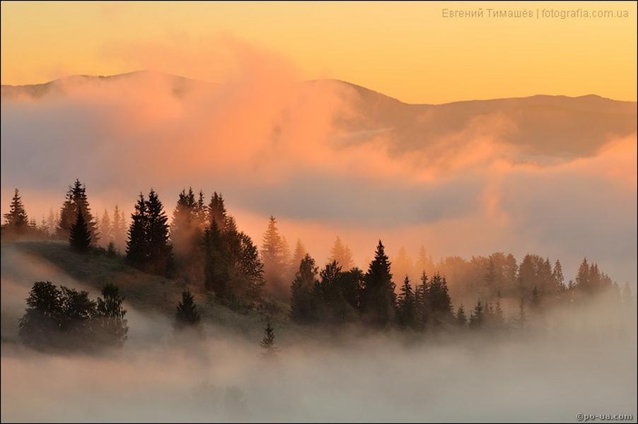 Карпатский туман, или над облаками